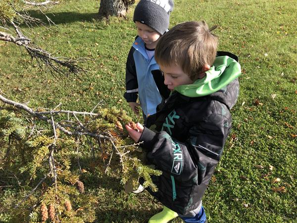 Students Learning and Exploring Outdoors